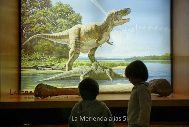 La Merienda a las 5 Museo de Ciencias Naturales